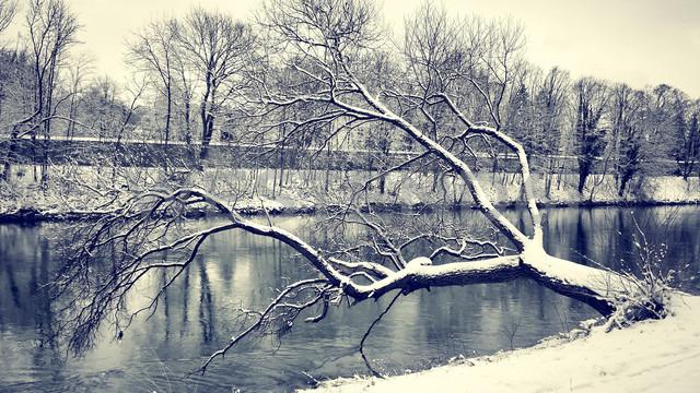 Germany, Landshut, winter landscape - SARF001332