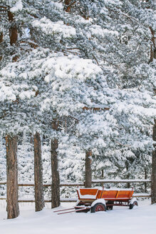 Bulgaria, red wooden trailer standing under snow-covered pines - BZF000043