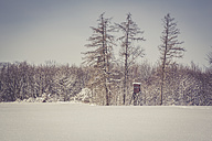 Germany, Baden-Wurttemberg, Swabian Mountains, Trees in snow covered landscape - LVF002829