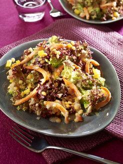 Lentil salad with salmon slices - SRS000552