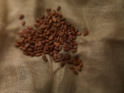 Cocoa beans on jute - SRSF000544
