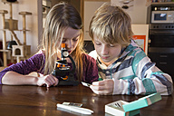 Brother and sister with microscope at home - SARF001360