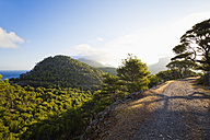 Spain, Mallorca, Serra de Tramuntana, hiking trail - MEMF000709