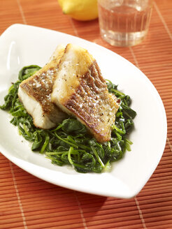 Coalfish fillet with leaf spinach - SRS000574