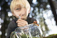 Snail on a glass with little boy looking through magnifier in the background - PDF000820