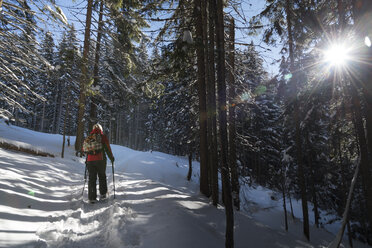 Austria, Tyrol, Schwaz, woman snowshoeing in forest - MKFF000167