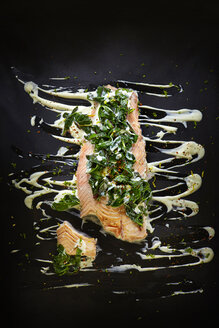 Foodart, salmon with chard, chili flakes, lemon peel, herbs, horseradish and remoulade - KSWF001421