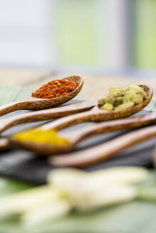 Wooden spoons with different spices - JUNF000239