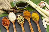 Different spices - JUNF000241