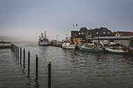 Germany, Schleswig-Holstein, Eckernfoerde, fishing boats at port, dark weather - FRF000209
