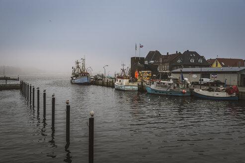 Germany, Schleswig-Holstein, Eckernfoerde, fishing boats at port, dark weather - FRF000209