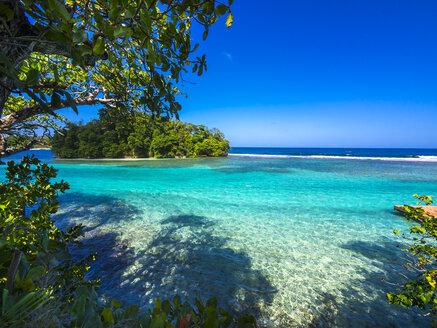 Caribbean, Greater Antilles, Jamaica, Portland Parish, Port Antonio, View to Pellew Island - AMF003868