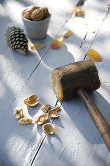 Cracked walnut and wooden hammer - GIS000064