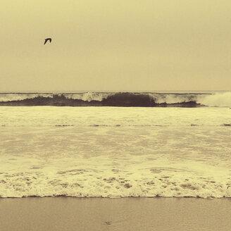 USA, California, Venice Beach - GCF000040