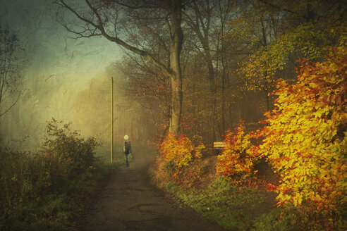 Germany, Wuppertal, walker standing on forest track, autumn forest, textured effect - DWI000441