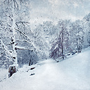 Germany, near Wuppertal, winter landscape, textured effect - DWI000450
