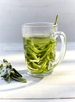 Glass of hot sage tea and fresh sage - KSWF001433