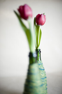Upcycled glass bottles used as flower vases - GIS000060
