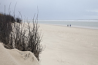 Germany, Langeoog Island, lonely beach - WIF001566