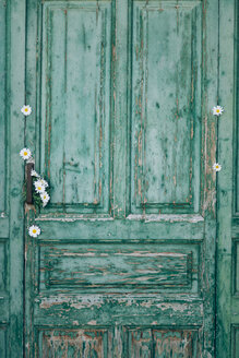 Green old wooden door decorated with white blossoms - JPF000025