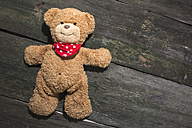 Teddy-bear on wooden background - DEGF000383