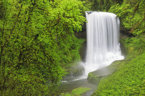 USA, Oregon, Silver Falls State Park, Middle North Falls - FOF007841
