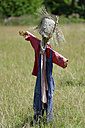 Selfmade scarecrow on a meadow - LBF001090
