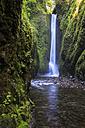 USA, Oregon, Multnomah County, Columbia River Gorge, Lower Oneonta Falls - FOF007875