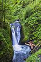 USA, Oregon, Columbia River Gorge, Multnomah County, Middle Oneonta Falls - FOF007911