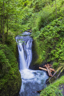 USA, Oregon, Columbia River Gorge, Multnomah County, Middle Oneonta Falls - FOF007911