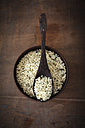Peeled hamp seeds, wooden bowl and spoon - EVGF001419