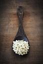 Peeled hamp seeds on wooden spoon - EVGF001427