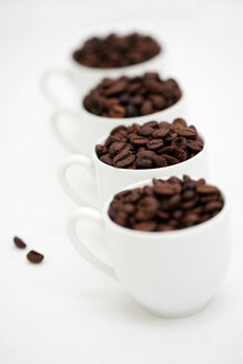 Four white cups of coffee beans on white ground - LSF000033