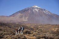 Spain, Canary Islands, Tenerife, hiking group in front of Teide Volcano - PC000123
