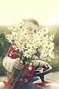 Little boy with bouquet of mayweed, Erkrath, North Rhine-Westphalia, Germany - SBDF002764