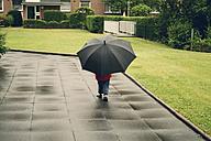 Boy with black umbrella, Erkrath, North Rhine-Westphalia, Germany - SBDF002777