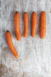 Five carrots - EVGF001581