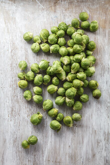Brussels sprouts - EVGF001583