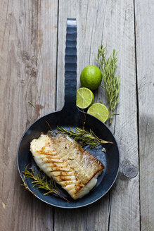 Cast-iron frying pan with piece of fried Norwegian codfish and twigs of rosmary - CSF025138