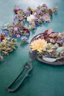 Flower arrangement and garden shears - GISF000089