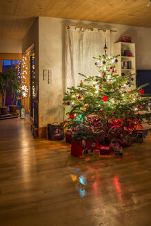 Decorated Christmas tree in a living room - SARF001621