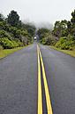 USA, Hawaii, Waimea, street in fog, Kokee State Park - BRF001121