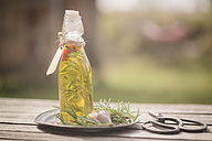 Rosemary oil in bottle, garlic, rosmary on plate, scissors on wood - SARF001602