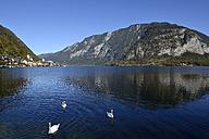 Austria, Salzkammergut, Hallstatt Dachstein Cultural landscape - LHF000445