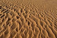 Algeria, Tassili n' Ajjer, sand ripples on a desert dune at Sahara - ESF001558