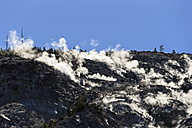 USA, Yellowstone National Park, Mountian, Forest fire - FOF007987