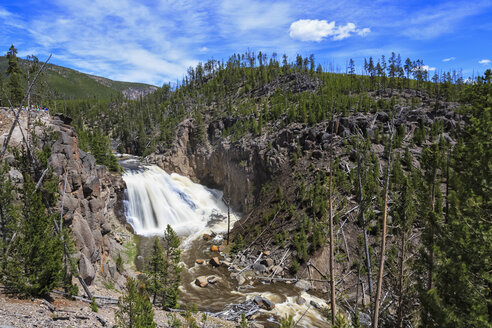 USA, Yellowstone National Park, View to Gibbon Falls - FOF007990