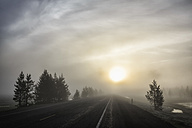 USA, Yellowstone Nationa Park, Morning mood, road and fog at sunrise - FOF008004