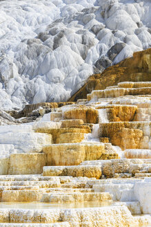 USA, Wyoming, Mammoth Hot Springs, Yellowstone National Park, Lower Terraces, Palette Spring - FOF008010