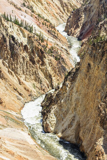 USA, Wyoming, Yellowstone National Park, View to Yellowstone River, Grand Canyon of the Yellowstone - FOF008066